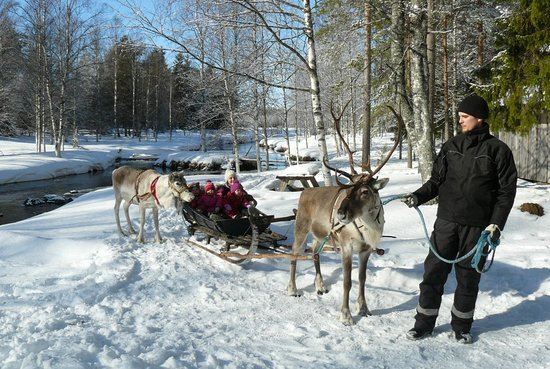 Sleigh ride is a part of farm visit.