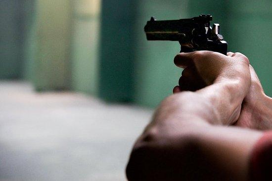 さまざまな銃で撃ちます! Glock17、AK74サイガ、ウィンチェスター、…