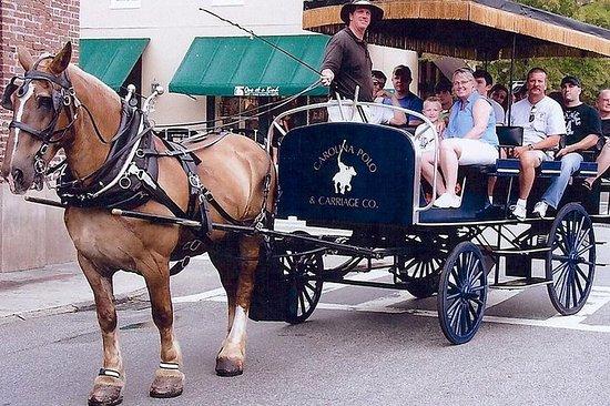 Tour histórico en carruaje de...