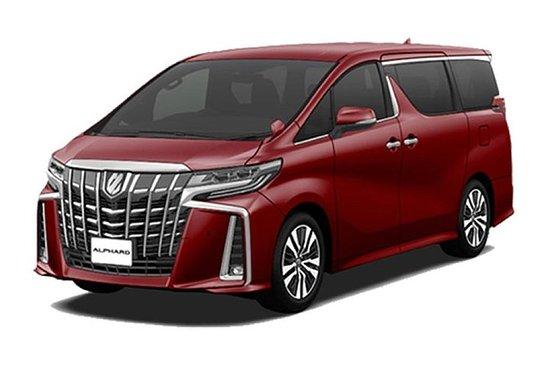Toyota ALPHARD 2019的NABANA NO SATO定制行程