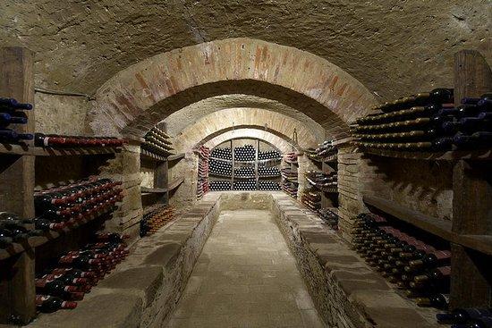 Degustazione di vini in una fattoria di famiglia
