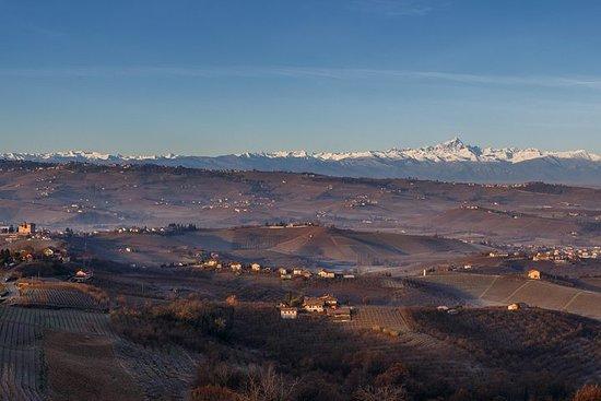 Private Piemonte Vin Tours - Barolo...
