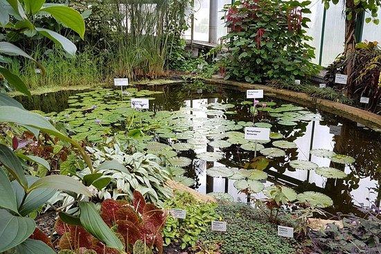 Billet d'entrée au jardin botanique Liberec