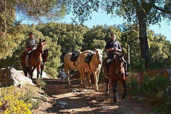 Tour a cavallo del Parco Naturale Grazalema a Cadice