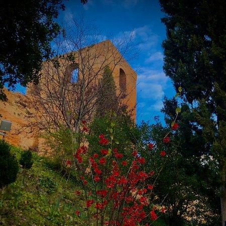 Visitas Guiadas Alhambra Granada Albayzin y Sacromonte