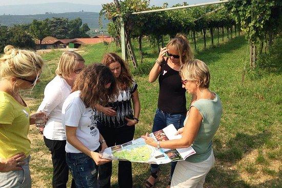 Amarone vinsmaking