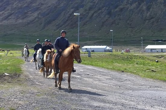 The Valley Ride Private HORSE RIDING Tour