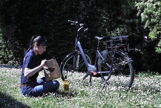 Picnic from Vaison la Romaine by e bike