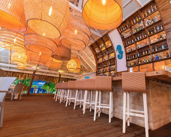 Get your favorite drink at our exclusive bar!
