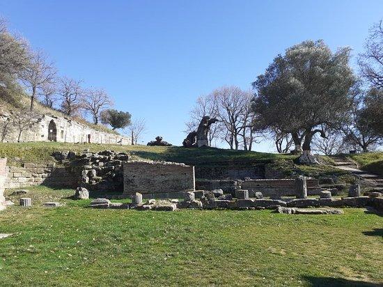Fier, แอลเบเนีย: Sunny day in Apollonia