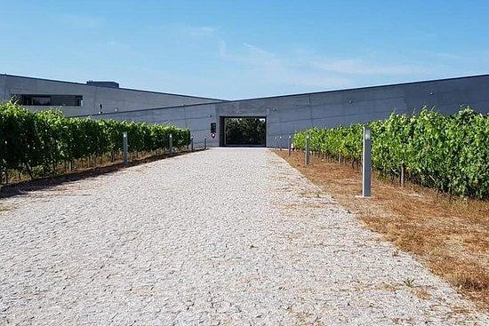 Regione del vino di Dão: versione portoghese su Bordeaux