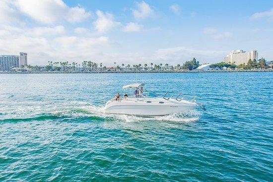 90 Minute San Diego Bay Tour – fotografija