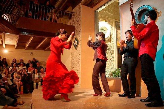 Entrada al espectáculo de flamenco en...