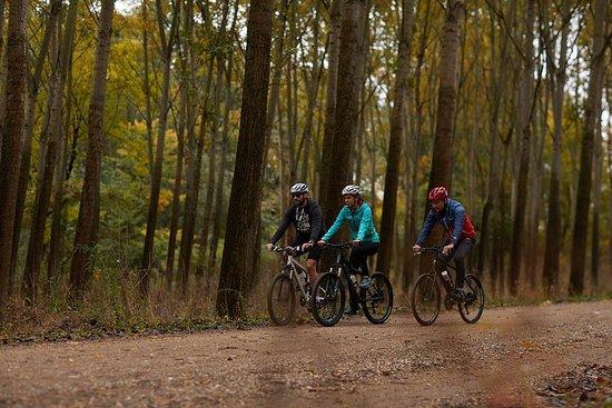 Excursão de bicicleta Obedska Bara