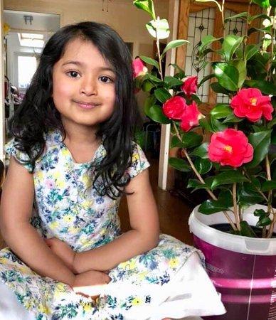 Euxton, UK: Naseeb Indian Takeaway