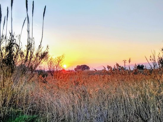 Moncofa, Spain: Atardecer. Sunset