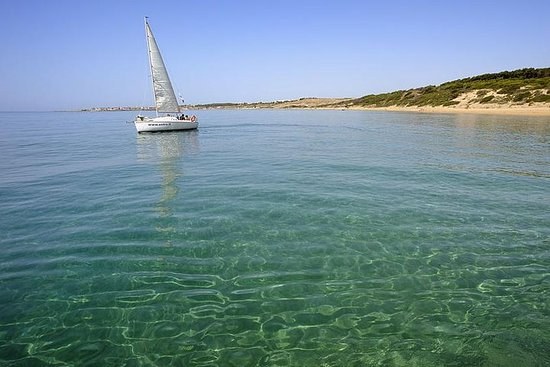 Half-Day Sailing Excursion