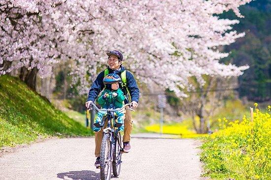 """BTF Rural Japon """"FURUSATO"""" Tour à vélo de cerisiers en fleurs"""