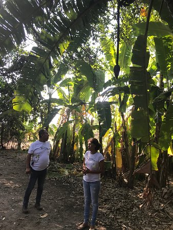 Heartland Traditions Tour: Adela and Alberto taking us through their fruit and flower orchard.