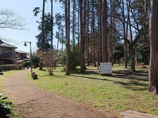 Utsunomiya Memorial Park