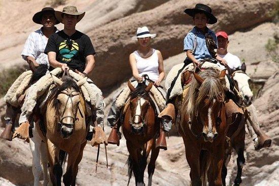 Horseback riding in the mountain