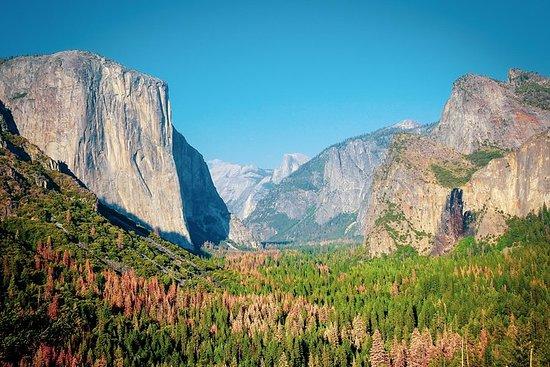 Hel dagstur till Yosemite National Park ...