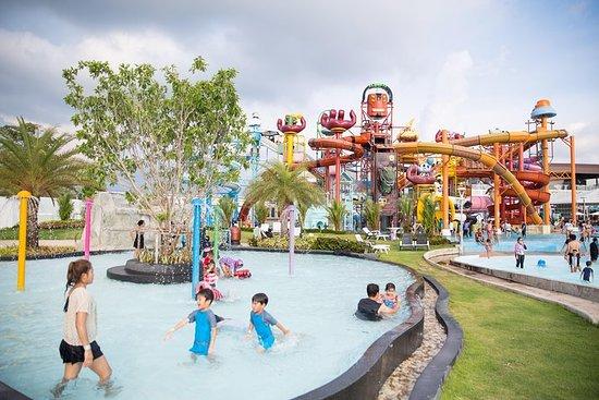 從曼谷出發:芭堤雅卡通網絡亞馬遜和泰迪熊博物館