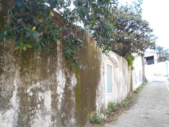 Pendamodi, Greece: Να ένα γραφικό σοκάκι, στο Πενταμόδι Ηρακλείου.