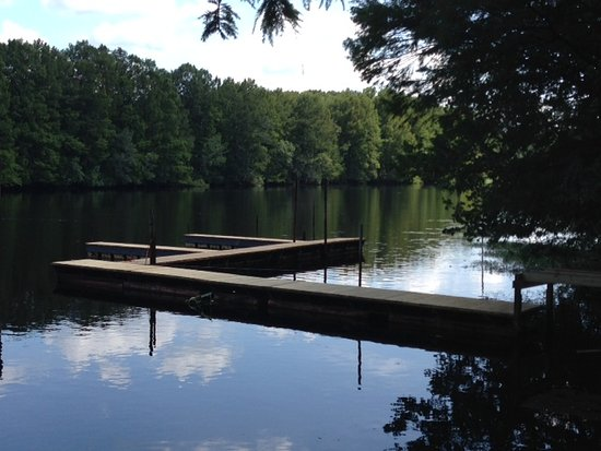 We have two docks. One covered dock for fishing and enjoying the river. A second floating dock with boat slips.