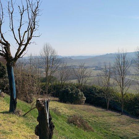 Montegrosso d'Asti照片