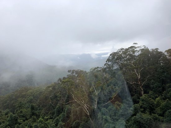 Blue Mountains Foodie, brewery & Winery Tour: Sometimes the fog lifted enough to catch some nice distant views.