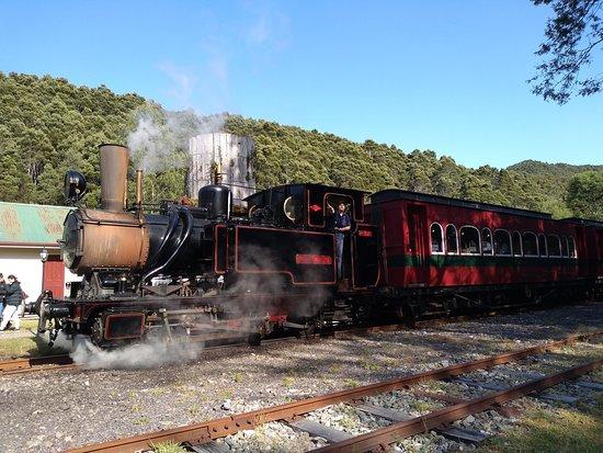 West Coast Wilderness Railway: Rack and Gorge from Queenstown: Durante el trayecto