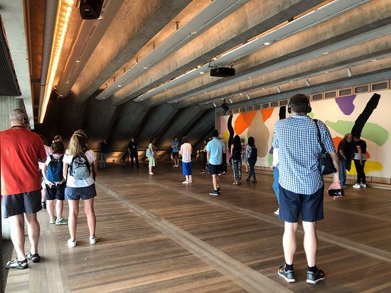 Sydney Opera House Guided Backstage Tour: The original designer was able to put his finishing touches into the Sydney Opera house years after he was fired from the project. This is his room.