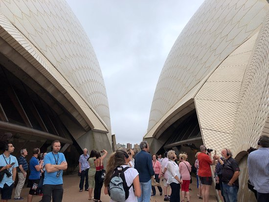 Sydney Opera House Guided Backstage Tour: Standing outside between the sails, the roof lines, that you could actually touch and see close up.