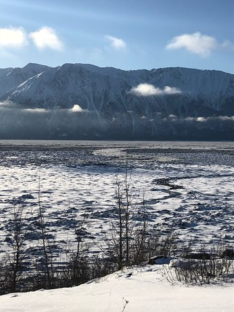 Winter - Wildlife & Turnagain Arm Tour: snow rivers