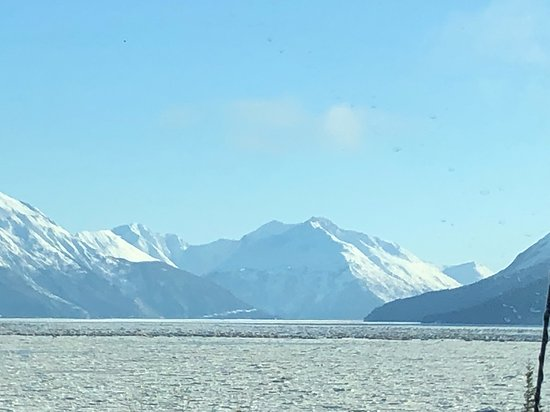 Winter - Wildlife & Turnagain Arm Tour: Mountain