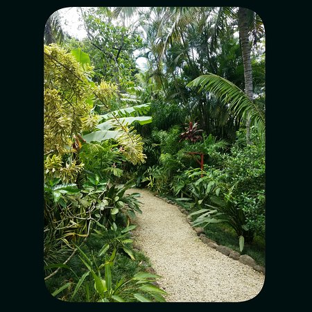 paths and garden rooms