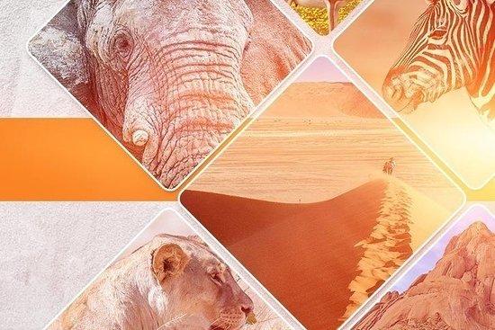 Galago Tours & Safaris Namibia