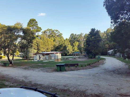 Blackwood Forest, Австралия: General setting