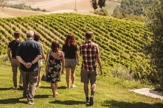 Curioseety, Tuscany