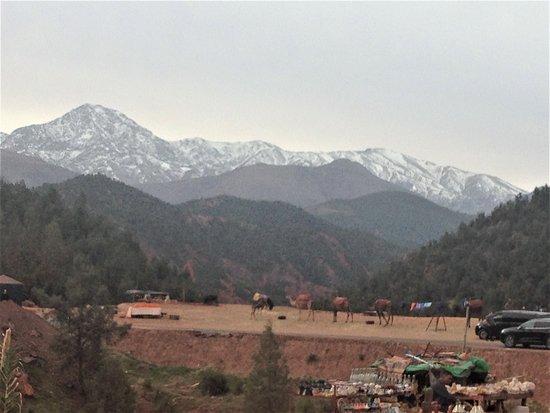 Ourika Valley, un día con almuerzo, pausa para el té (transporte privado).: Durant l'ascension, mélange de paysages