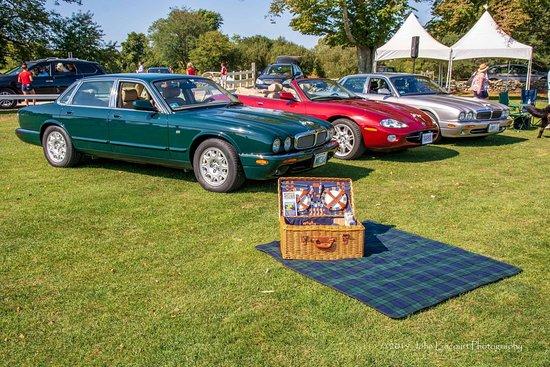 Newport Jaguar Tours