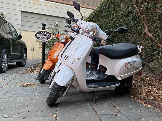 Scooter Stop Rentals