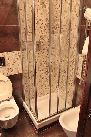 Habitación individual: la ducha es muy estrecha