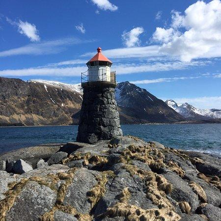 Gimsoysand, Norway: Берегите природу!!!...)))