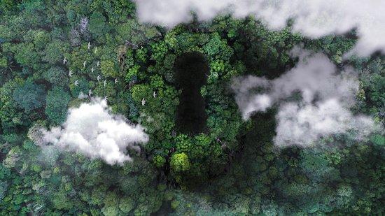 Jungle Escape Nosara