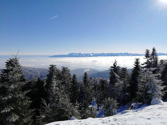 Gora Turbacz