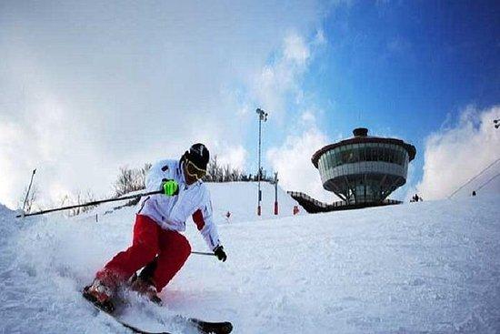 Winter 10 days Ski & Jeju & Mt Seorak & DMZ & Seoul on the end Nov to...