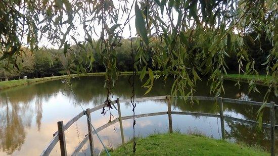 L étang