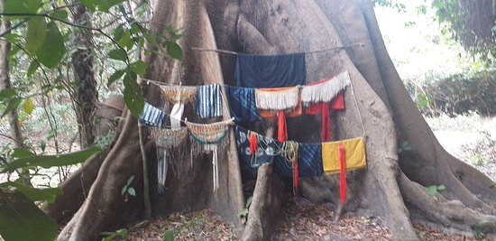 Казаманс, Сенегал: customised travel agency Circuit Tam Tam Discovery of the Casamance and its tradition, the Diola culture, the ancestral customs, its rivers and islets. A real attic of senegal as rich as you imagine it. Contact c.cicotour@yahoo.fr web www.cicotour.com www.dakar-travels.com watsap 00221776338621